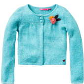 Cakewalk Cardigan Phila Blume Ice Green Blau